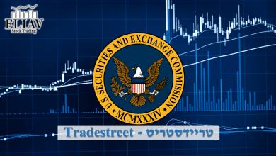 ניתוח דוחות SEC